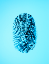 Fingerprint_blue.png