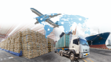 Supply chain due diligence